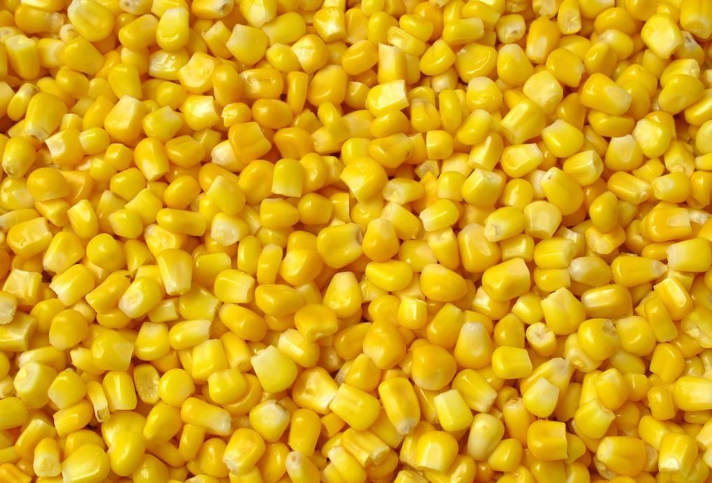 玉米2.png